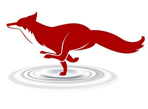 swimming fundraising - Oxxford Hunt Swim Team