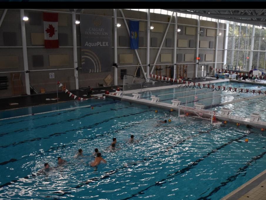 WILD Water Polo Calgary