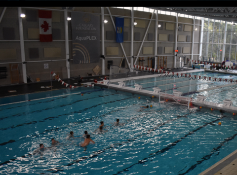 water polo fundraising - WILD Water Polo Calgary