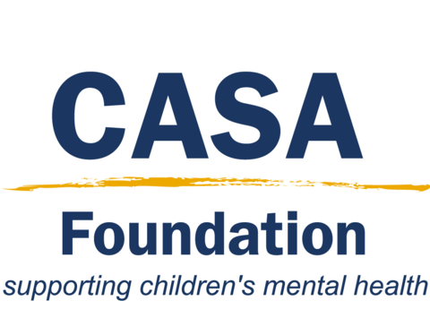 other organization or cause fundraising - CASA Scholarship Programs