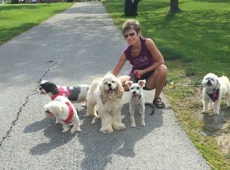 Lotsa Dogs Rescue