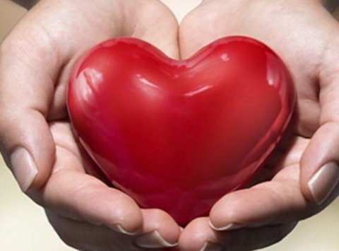 daycare & nurseries fundraising - Heart in Hands Developmental Center
