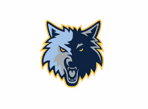 ice hockey fundraising - Novice Timberwolves