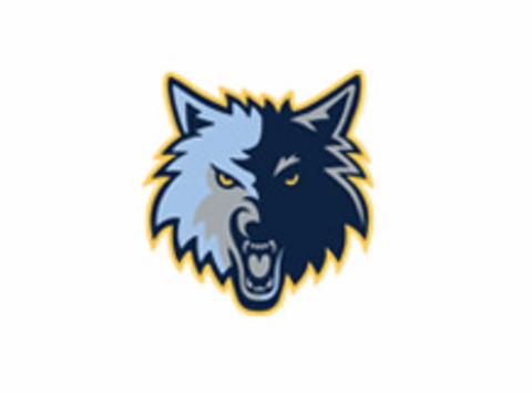 Novice Timberwolves