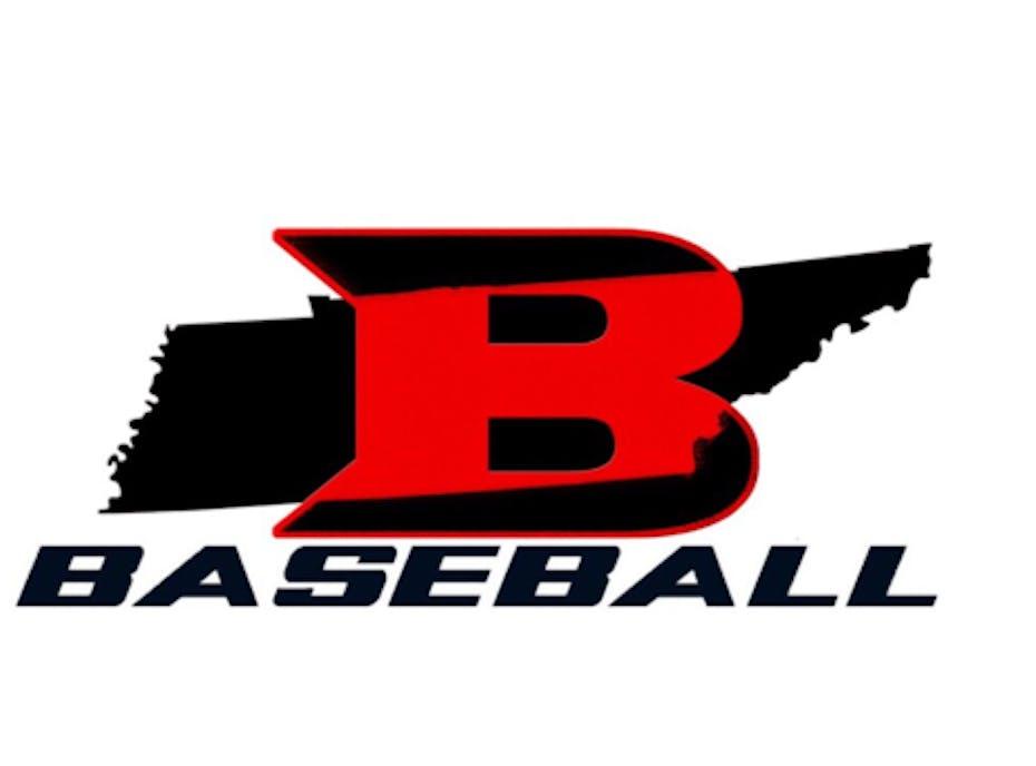 Bats Baseball 9u