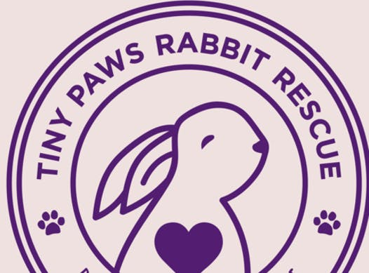 non-profit & community causes fundraising - Tiny Paws Rabbit Rescue