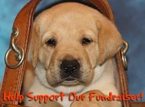 animals & pets fundraising - Guiding Eyes For Blind Erie Puppy Raising Region