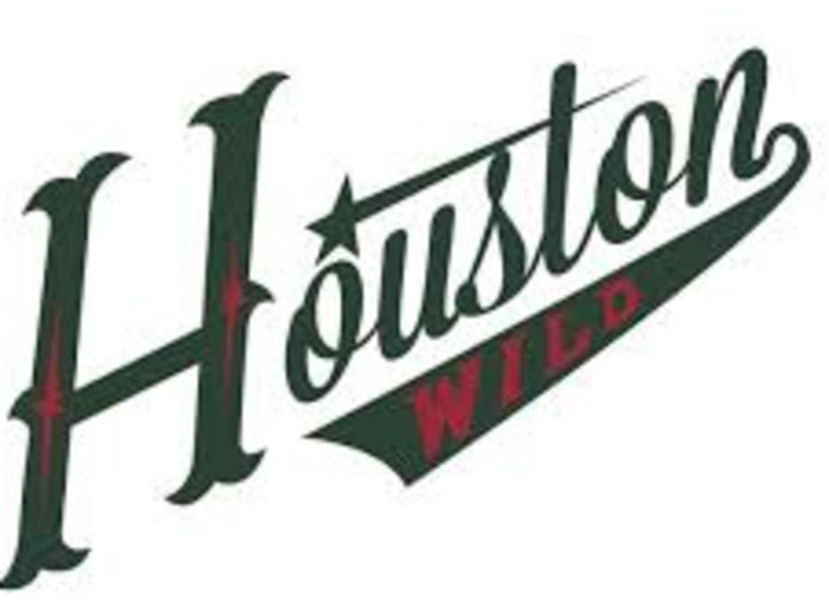 Houston Wild 2019/20 14UAA (LaBrosse)