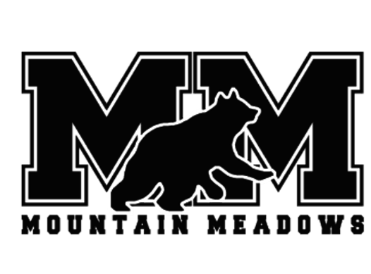 elementary school fundraising - Mountain Meadows Elementary