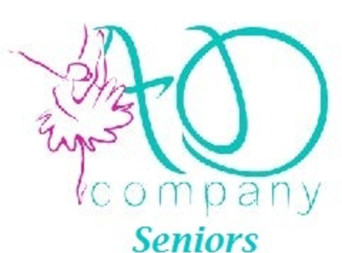 dance fundraising - Absolute Dance Senior Team