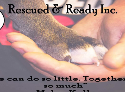 animals & pets fundraising - Rescued and Ready, Inc