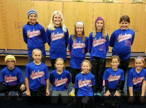 softball fundraising - Motor City Madness 10u Hool