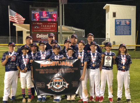 baseball fundraising - DAA Tigers (Coach Rose)