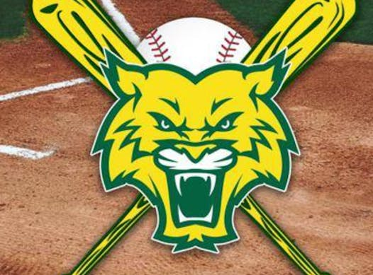 baseball fundraising - GORC Wildcats 10U 2018/2019 Travel Baseball