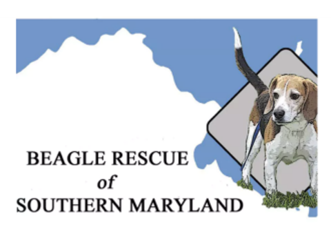 animals & pets fundraising - Beagle Rescue of Southern Maryland