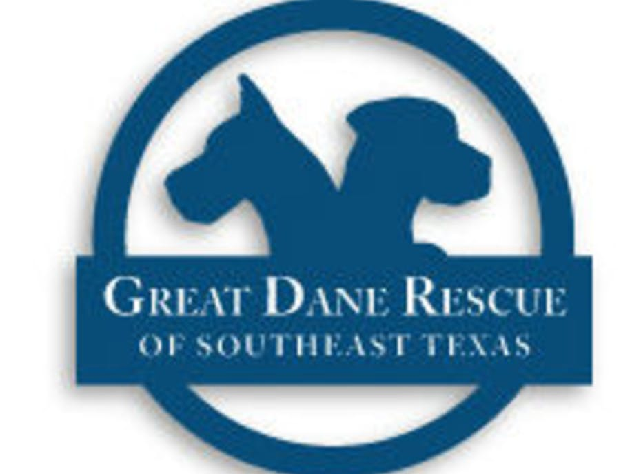 Great Dane Rescue's Lynch Creek Farm Fundraiser
