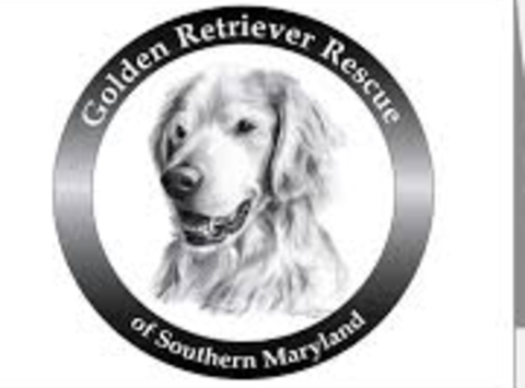 non-profit & community causes fundraising - Golden Retriever Rescue of Southern Maryland