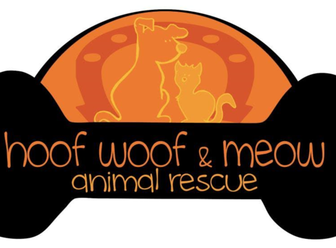 Hoof Woof & Meow Holiday Fundraiser