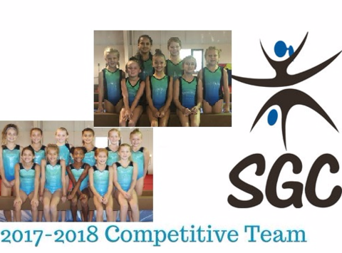 gymnastics fundraising - Springfield Gymnastics Center