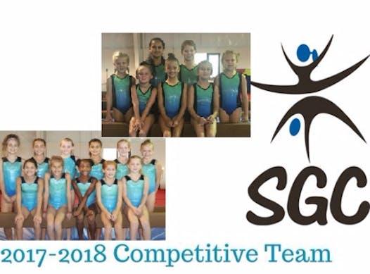 gymnastics fundraising - Springfield Gymnastics Center