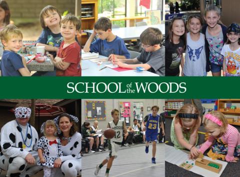 school, education & arts programs fundraising - School Of The Woods Flower Power