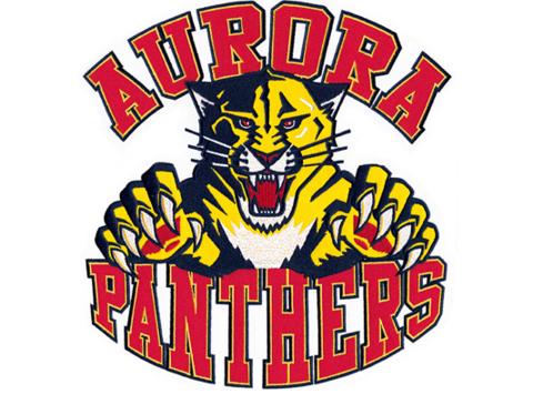 ice hockey fundraising - Aurora Panthers Bantam B