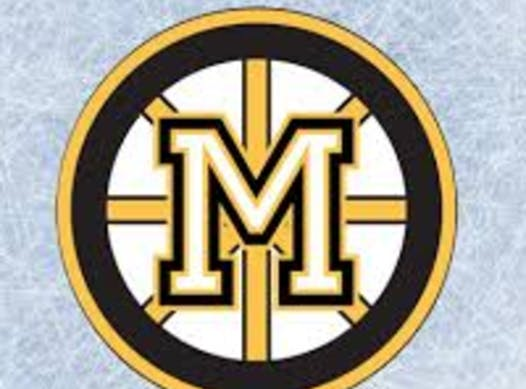 ice hockey fundraising - Meadowvale Select 6 2017-2018