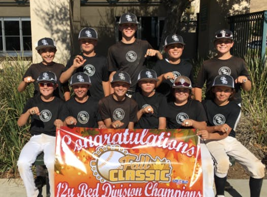 sports teams, athletes & associations fundraising - California Sand Dawgs 12u Black