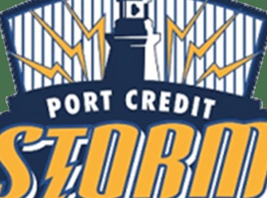 ice hockey fundraising - PORT CREDIT STORM - MIN NOVICE GOLD