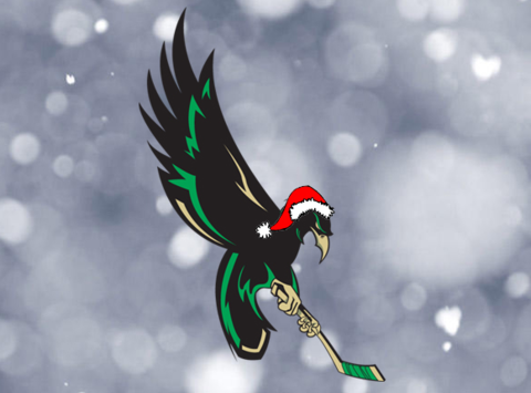 Wilmington Nighthawks Youth Ice Hockey Club