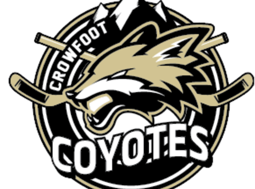 ice hockey fundraising - Crowfoot Atom 1 Coyotes