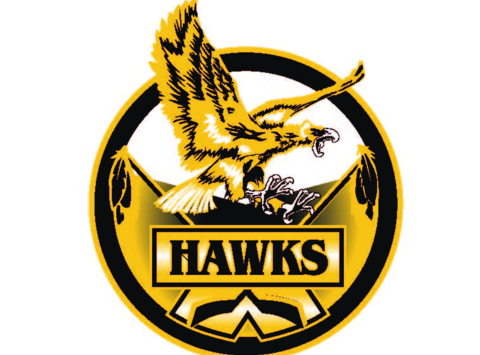 Hawks 273