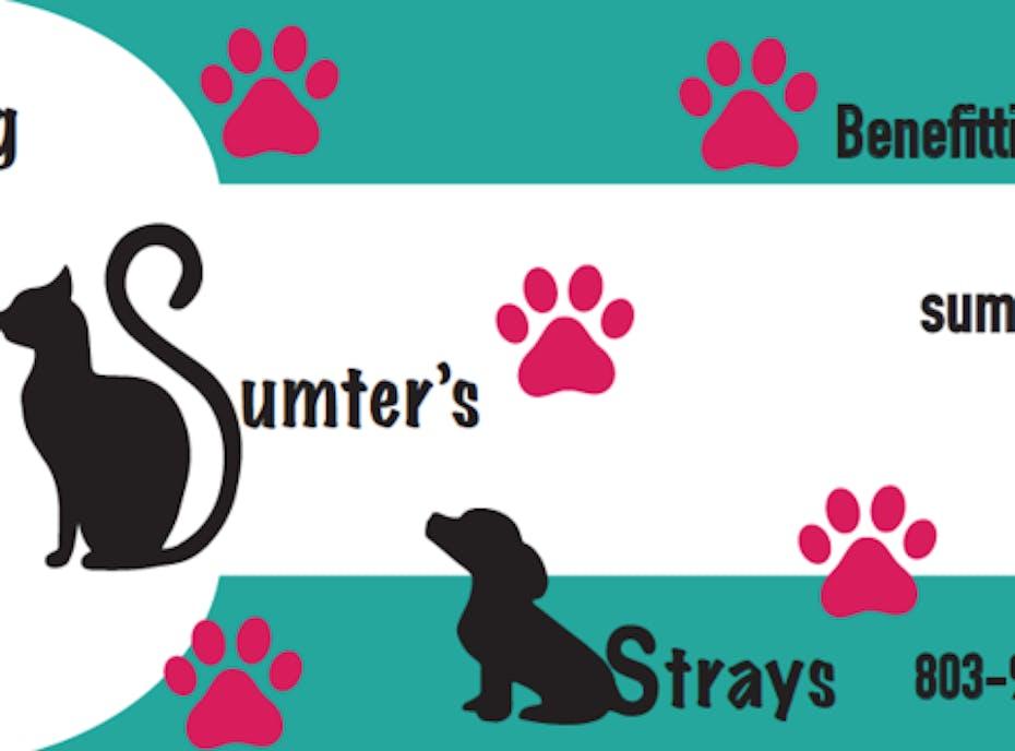 Saving Sumter Strays