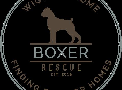 Wigglin' Home Boxer Rescue