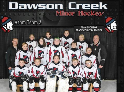 ice hockey fundraising - DCMHA Atom House Team 2