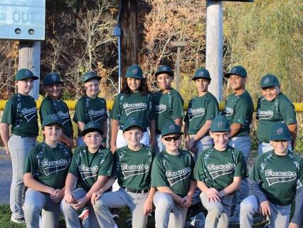 Brewster Brigade - Ripken Baseball 2018 (12U Travel Baseball)