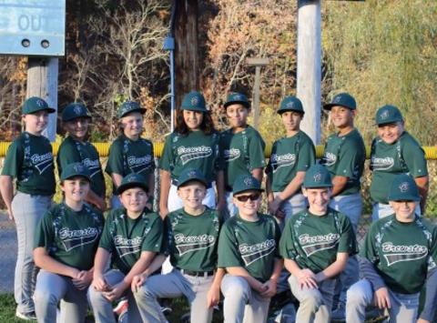 baseball fundraising - Brewster Brigade - Ripken Baseball 2018 (12U Travel Baseball)
