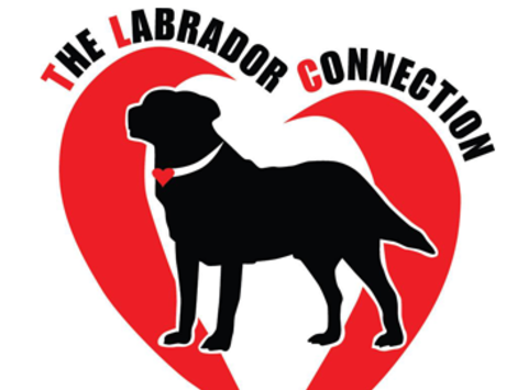 Love 4 Labs Fundraiser
