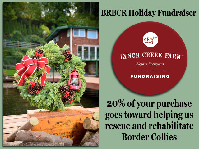 2017 BRBCR Holiday Fundraiser