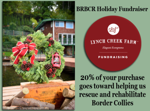 animals & pets fundraising - 2017 BRBCR Holiday Fundraiser