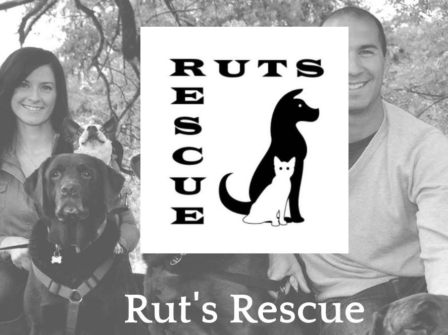 Ruts Rescue Holiday Fundraiser