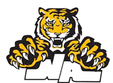 North Allegheny Inline Hockey