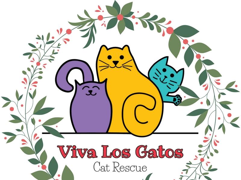 Viva Los Gatos Cat Rescue
