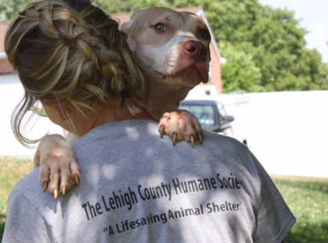 Lehigh County Humane Society Holiday Fundraiser