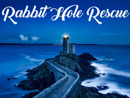Rabbit Hole Rescue