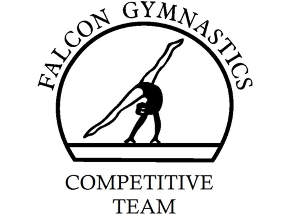 Falcon Gymnastics Competitive Team
