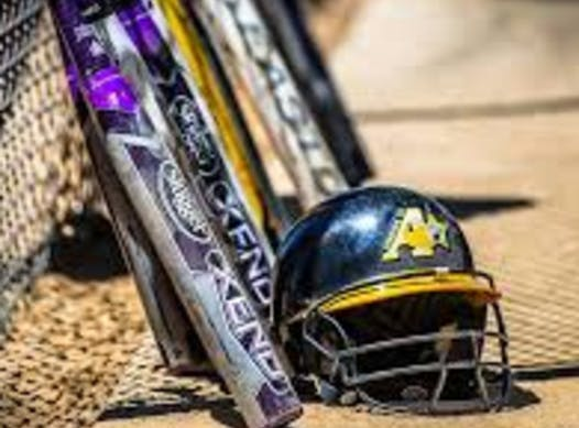 softball fundraising - Ashburn Shooting Stars 2024