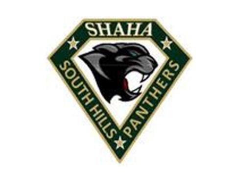 ice hockey fundraising - SHAHA