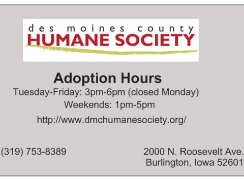 animals & pets fundraising - Des Moines County Humane Society