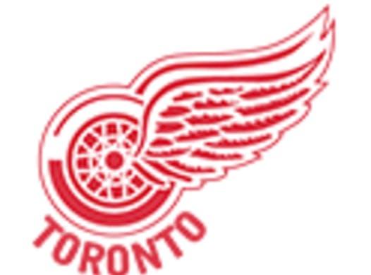ice hockey fundraising - Toronto Red Wings Minor Atom 2009